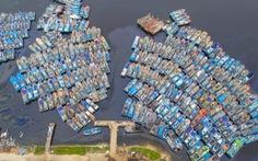 Ngư dân Đà Nẵng đưa thuyền vào sâu sông Hàn, nhường chỗ cho tàu tỉnh bạn trú bão