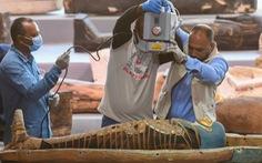 Ai Cập phát hiện 100 quan tài 2.500 tuổi, bên trong còn xác ướp
