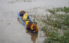 Xóm Việt kiều Campuchia 'đói' cá