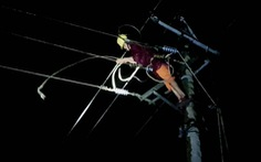 75 ngàn hộ vẫn mất điện, điện lực Quảng Bình sửa xuyên đêm