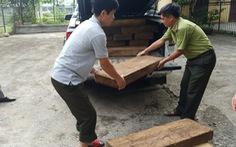 Xe chở gỗ lậu 'lọt' qua 3 trạm kiểm lâm, gặp cảnh sát giao thông mới bị bắt