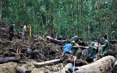 Cào bùn, bới đất tìm tung tích nạn nhân còn mất tích ở Trà Leng