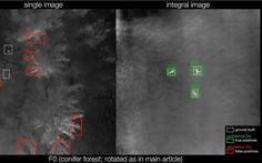 Tìm người lạc trong rừng bằng camera bay tích hợp AI