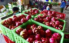 Việt Nam đạt mức xuất siêu kỷ lục 20 tỉ USD