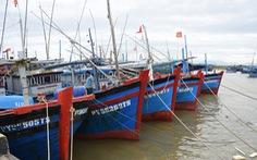 Phú Yên, Khánh Hòa cấm biển từ sáng nay, phòng bão số 12