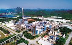 Phát triển vùng nguyên liệu, giảm gánh nặng cho ngành giấy