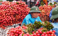 Trung Quốc không còn là thị trường xuất khẩu nông sản lớn nhất của Việt Nam