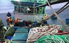 Kịp thời cứu hộ tàu cá sắp chìm cùng 12 ngư dân
