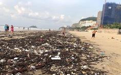 Tham tán, chuyên gia nước ngoài muốn giúp Vũng Tàu 'không rác thải nhựa'