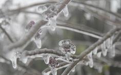 Mẫu Sơn lạnh 1 độ, dân mạng đã rao 'Mẫu Sơn có mưa tuyết'