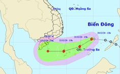 Áp thấp nhiệt đới đã mạnh lên thành bão số 14, còn tiếp tục mạnh hơn