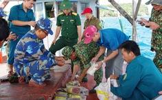 Phát hiện 20 gói ma túy in chữ Trung Quốc dạt vào bờ biển