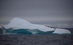Nam Cực trở thành châu lục cuối cùng bị COVID-19 tấn công