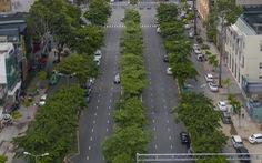 Diện mạo nào cho 'siêu' phố đi bộ ở TP.HCM?