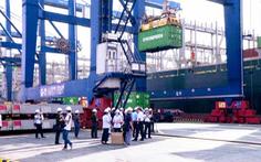 Việt Nam có đội tàu biển 15,5 tuổi, trẻ hơn thế giới gần 6 tuổi