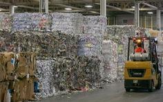 Ngành tái chế giấy hồi sinh nhờ dịch bệnh