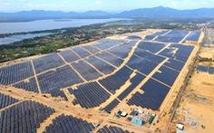 Nhà máy điện mặt trời lớn nhất tỉnh Bình Định hòa lưới vào 'phút chót'