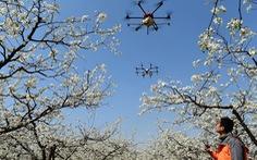 Trung Quốc dùng drone nhắc nhở người dân ra đường nhớ đeo khẩu trang