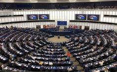 Dấu ấn của niềm tin tại EU vào Việt Nam qua EVFTA