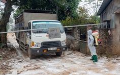 'Cô lập' đàn gia cầm hơn nửa triệu con để chống cúm A/H5N6