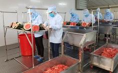 Bún dưa hấu và bánh tráng thanh long 'giải cứu' nông sản thời dịch COVID-19