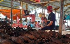 Indonesia cấm nhập khẩu động vật sống từ Trung Quốc