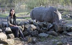 'Cô gái tê giác' Trang Nguyễn: Vì nhiều khu rừng đã chết...
