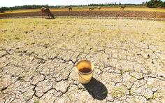 Sống chung với hạn, mặn ở Mekong