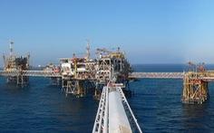 Có thể mất 2,3 tỉ USD khi giá dầu giảm sâu, PVN muốn tăng mua dầu thô
