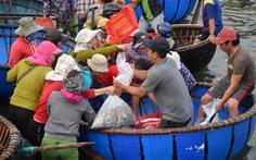 Tàu cập bến, ngư dân Quảng Nam phấn khởi bởi trúng mùa cá cơm