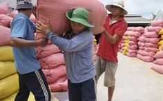 Bị nêu 'chưa làm nghiêm', Bộ Công thương muốn công khai việc mở tờ khai xuất khẩu gạo