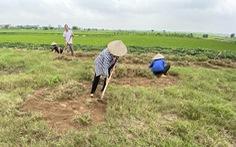 Vụ 'đại gia' Đường Nhuệ: Đấu giá đất có mấy người xăm trổ