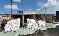 Phải mở cửa cho xuất khẩu gạo