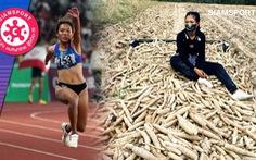 Thất nghiệp mùa COVID-19, nhà vô địch châu Á Parinya ra đồng nhổ khoai mì