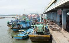 Bình Thuận tăng cường việc chống khai thác hải sản bất hợp pháp