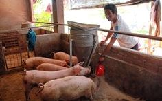 Đắk Lắk không tuyển dụng đặc cách giáo viên theo yêu cầu của Bộ Nội vụ