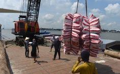 14 tàu chở 54.000 tấn gạo đã rời cảng Mỹ Thới đi các nước