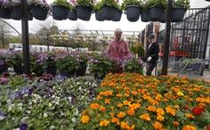 Làm vườn - một liệu pháp tâm lý thời COVID-19