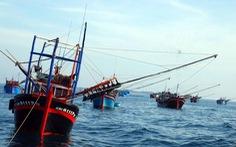 Việt Nam yêu cầu Trung Quốc xử nghiêm, bồi thường vụ đâm chìm tàu cá ở Hoàng Sa