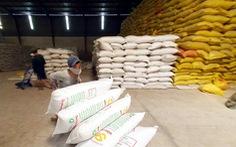 Bộ Tài chính đề nghị tạm dừng xuất gạo tẻ, vẫn xuất nếp