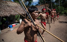 Dịch COVID-19 lan tới Amazon, đã có thổ dân đầu tiên mắc bệnh