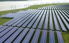 Làm việc giữa nắng chang chang trên cánh đồng điện mặt trời