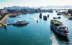 Tàu du lịch đồng loạt giảm giá cước tham quan vịnh Hạ Long