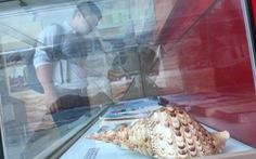 Tư liệu Hoàng Sa - Hành trình trái tim - Kỳ 2: Những vỏ ốc ở Hoàng Sa