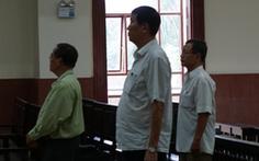 Giảm án cho 3 bị cáo vụ thanh lý 658ha cao su ở Bình Dương