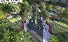 Ruộng bậc thang Việt Nam được sử dụng trong thiết kế cảnh quan