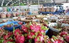 Thanh long góp phần đưa Châu Thành là huyện nông thôn mới đầu tiên của Long An