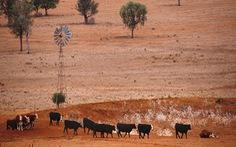 Đại dịch COVID-19 gây ảnh hưởng lớn đến quan trắc khí tượng