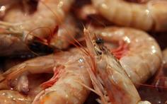 Giả khuyến mãi 'câu khách', chủ nhà hàng hải sản bị phạt hơn 700 năm tù