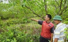 Thêm 'án' cảnh cáo cho phó chủ tịch huyện chuyển đất nuôi tôm thành đất ở